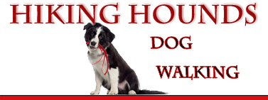 Hiking Hounds Dog Walking Services for Abbotsford and Mission BC